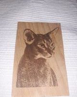 Photo laser engraving on wood, plywood. How to make it yourself.